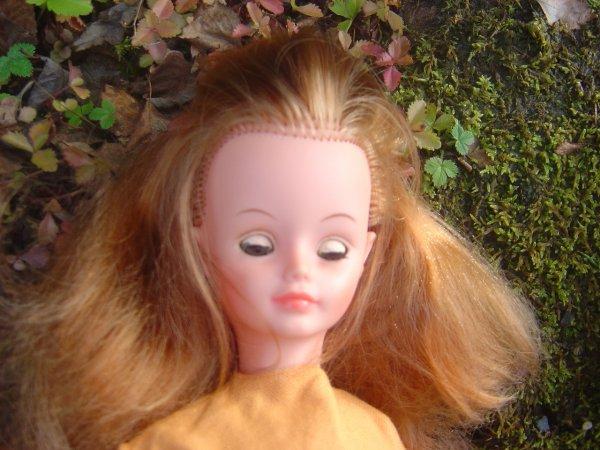 Une vrai beaut nuance roux blond et brun dans les - Couleur qui va avec le brun ...